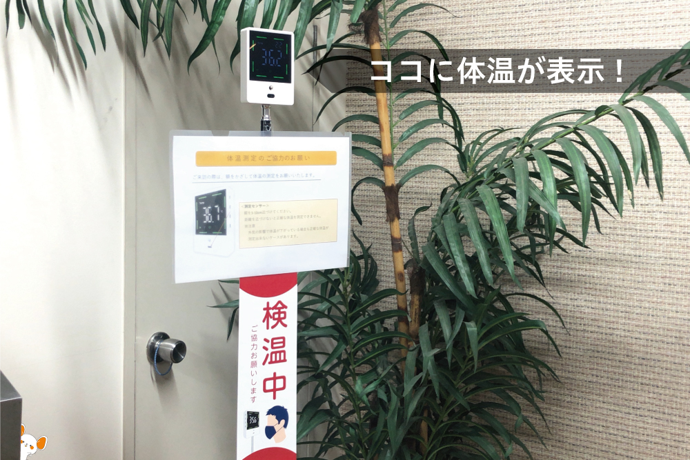 CHU-PA 非接触 体温計